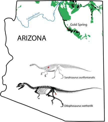 Identifying spatial heterogeneity in the elemental concentration of Early Jurassic dinosaur bones