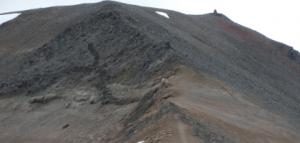 TRACE ELEMENTS IN ICELANDIC RHYOLITE