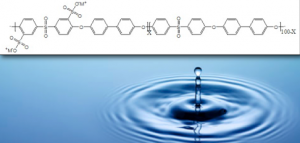 Ion Concentrations in Reverse Osmosis Membranes