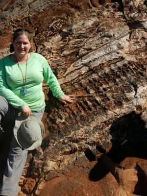 Crenulated Stromatolites