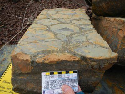 Awesome Mud Cracks (side)