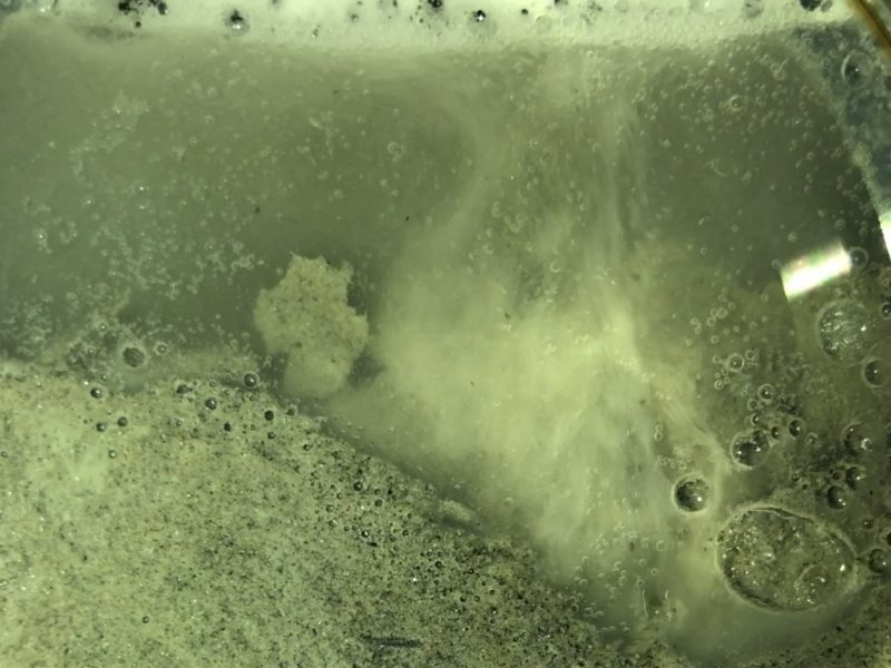 A photo of methane bubbles forming as a field sample of gas hydrate is allowed to depressurize