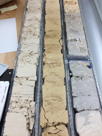 Sediments extracted from the seafloor of the Bay of Bengal. Kaustubh Thirumalai.