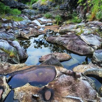 A bedrock-floored streambed after a recent flow event in Kohala Peninsula. Brendan Murphy.