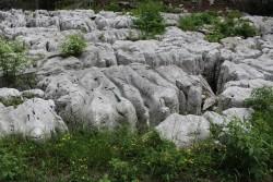 Karst rock in Slovenia.