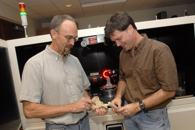 UT Austin professors John Kappelman (left) and Richard Ketcham examine casts of Lucy while scanning the original fossil (background). (Photo by Marsha Miller/ UT Austin)