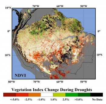 Effects of Drought on Amazon Rainforest Vegetation Greenness