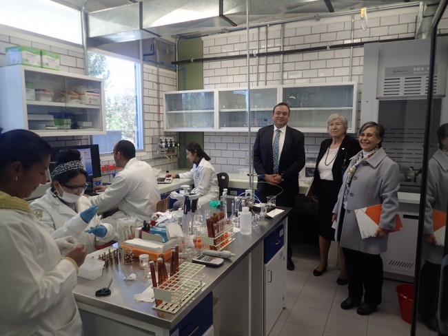 Dean Sharon Mosher visiting UNAM's geosciences laboratory facilities with Elena Centeno Garcia, director of UNAM's Institute of Geology and Arturo Iglesias, director of UNAM's Institute of Geophysics