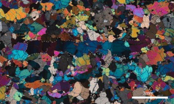 A peridotite xenolith thin section under polarized light. The white dashes outline a large, stretched grain.