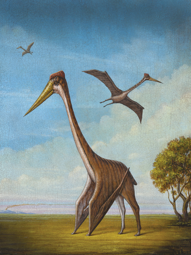 Texas Pterosaur Flies into Spotlight this National Fossil ...
