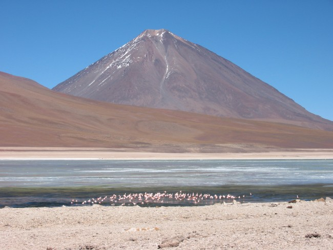 Volcano Licancabur, an active volcano in the Andean continental volcanic arc on the Chile-Bolivia border, looms above flamingos in a nearby lake. Brian Horton.