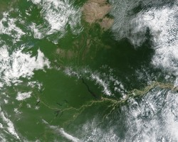 Fires in the Amazon basin of Brazil. Rong Fu's research indicates accelerating deforestation and burning of biomass could decrease rainfall in the region.