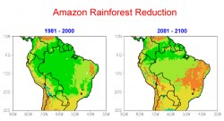 "Cook's computer simulation showed a 70 percent reduction in Amazon rainforest vegetation from the late 20th century to the late 21st century, under a ""business as usual"" scenario. Green = rainforest, light green = savanna, and orange = caatinga (semi-arid scrubland and thorn forest)."