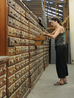 The university has a world class collection of 4.5 million invertebrate and 1 million vertebrate specimens, putting them among the seven largest in the country.