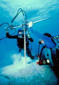 Coring a Porites lobata Coral Colony