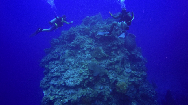 Block of reef margin facies at 110 ft resting on upper slope, Chris Zahm and dive guide Tammara for scale.