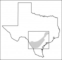 Eagle Ford Shale Map