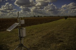 Soil moisture sensors installed by the Jackson School will provide data to more accurately predict droughts and floods in Texas and help a new NASA satellite predict weather on a global scale. Richard Casteel.