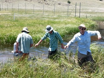 Lee Bobbitt, Ian Hanes and Peter Carlson setting up the dye/salt trace.