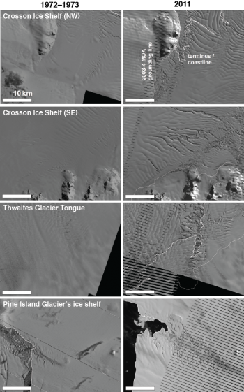 West Antarctic Ice Shelves Then and Now