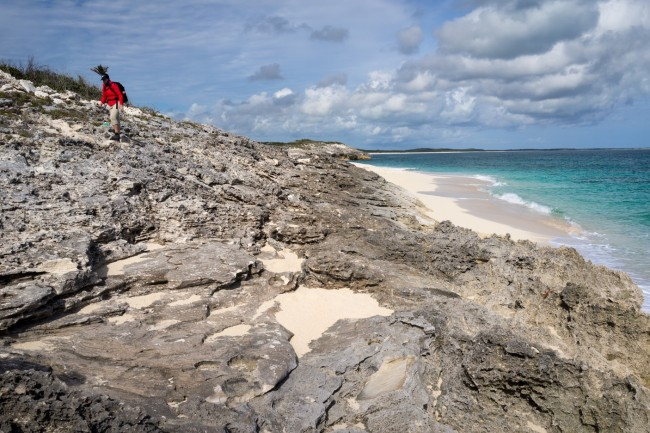 Sandy Point unconformity as seen by Andrea Nolting
