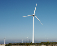 PUF lands in West Texas host this wind farm and the state's largest vineyard