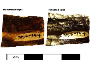 Compare indochinite (16TM144) specimen in transmitted and reflected light.