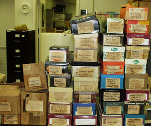 An incoming donation of 18,000 specimens..in shoe boxes