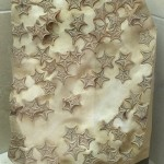 Famous starfish slab
