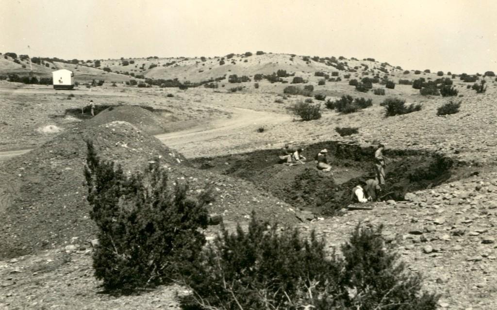 Otis Chalk Quarry 3