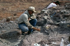 Tim Rowe Unearthing Sarahsaurus
