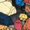 Petrology/Mineral Physics